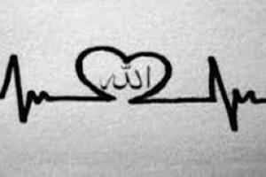 İnsanî Kalp