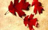 Eylül Romanının Geniş Özeti ve Ayrıntılı Tahlili